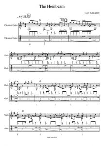 sample notation